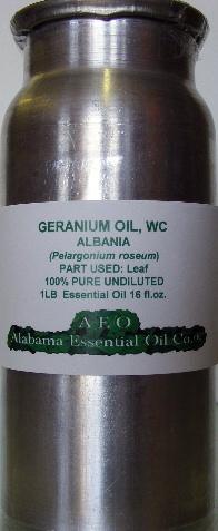 Geranium Rose Essential Oil Albania Alabama Essential Oil Company