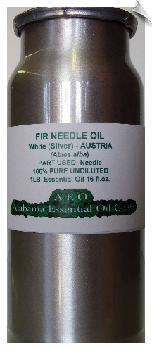 Fir Needle Essential Oil, White Silver | Alabama Essential Oil Company