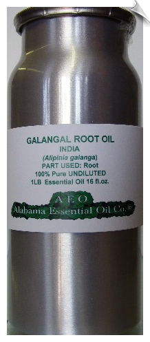Galangal Root Essential Oil India | Alabama Essential Oil Company