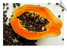 Papaya Seed Carrier Oil