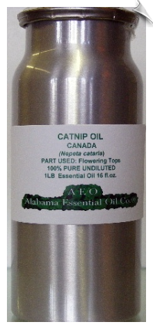 Catnip Essential Oil | Alabama Essential Oil Company