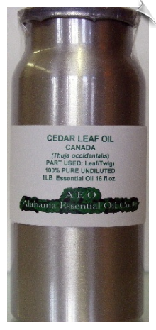 Cedar Leaf Essential Oil | Alabama Essential Oil Company