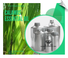 Calamus Essential Oil | Alabama Essential Oils