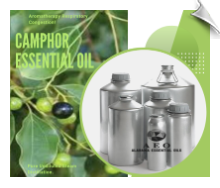 Camphor Essential Oil White | Alabama Essential Oils