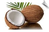 Coconut Oil Fractionated