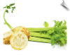 Celery Herb, Total CO2